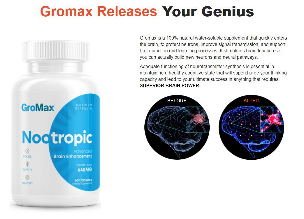 GroMax Nootropic